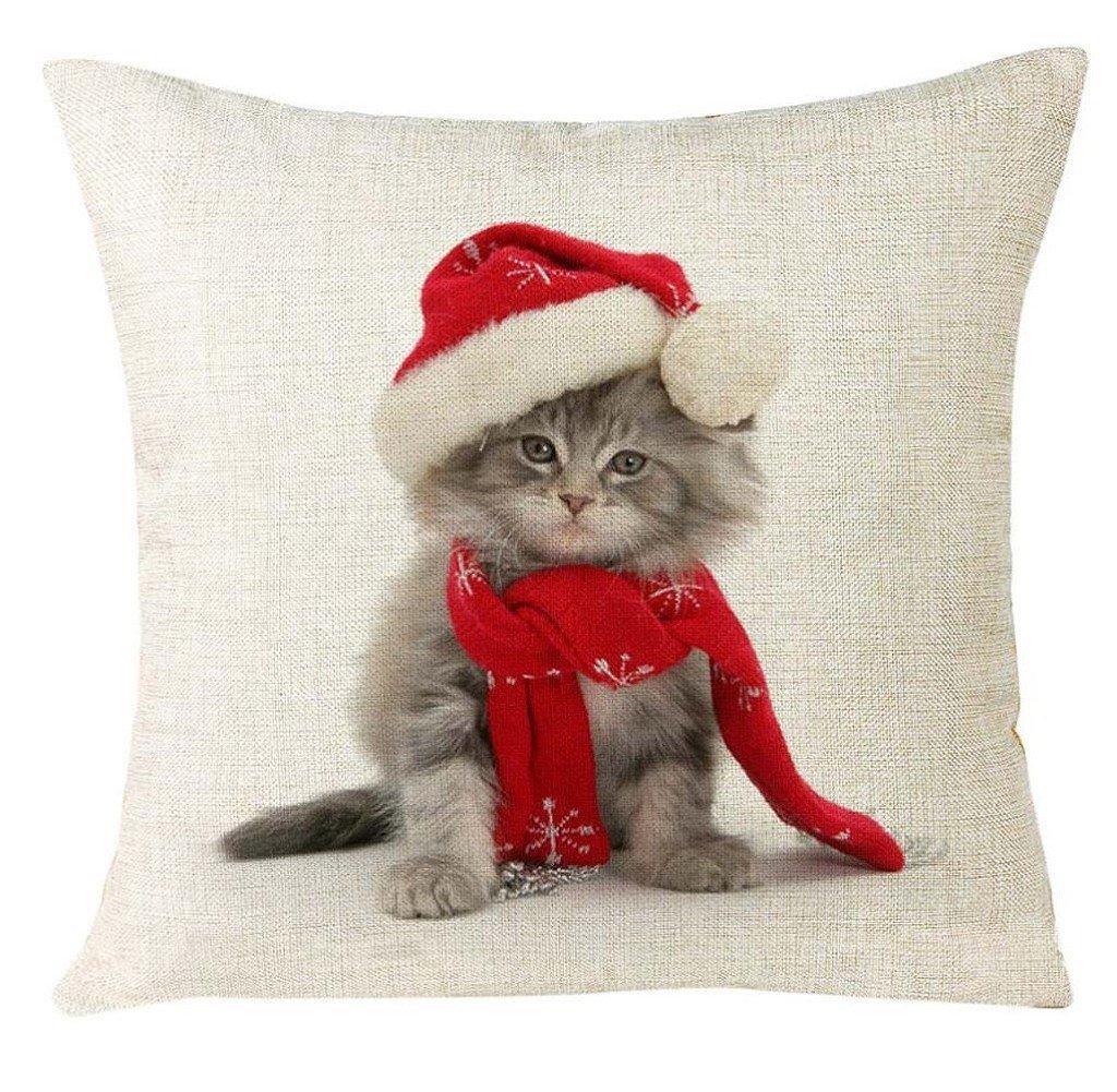 Imágenes de gatos navideños